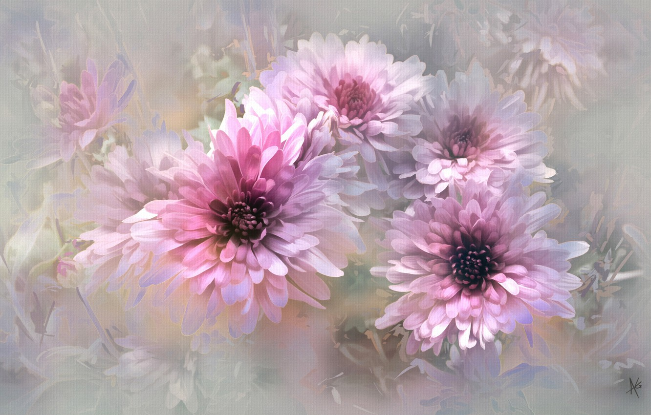 Photo wallpaper flowers, nature, background