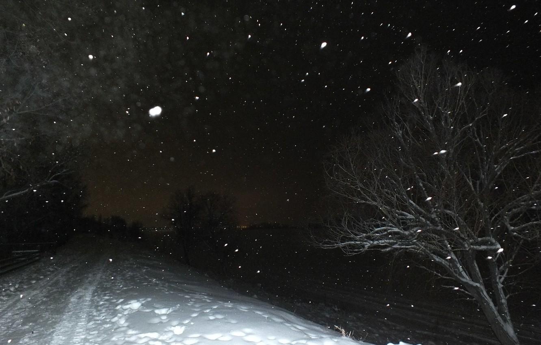 Photo wallpaper road, snow, night, nature, tree, Volga