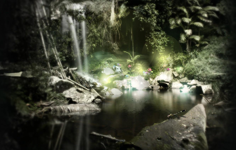 Photo wallpaper flowers, comfort, tropics, pond, darkness
