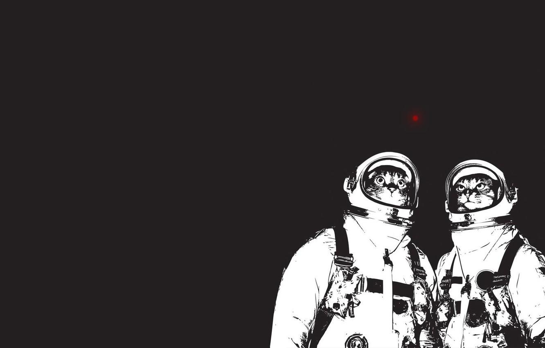 Photo wallpaper minimalism, cat. astronauts