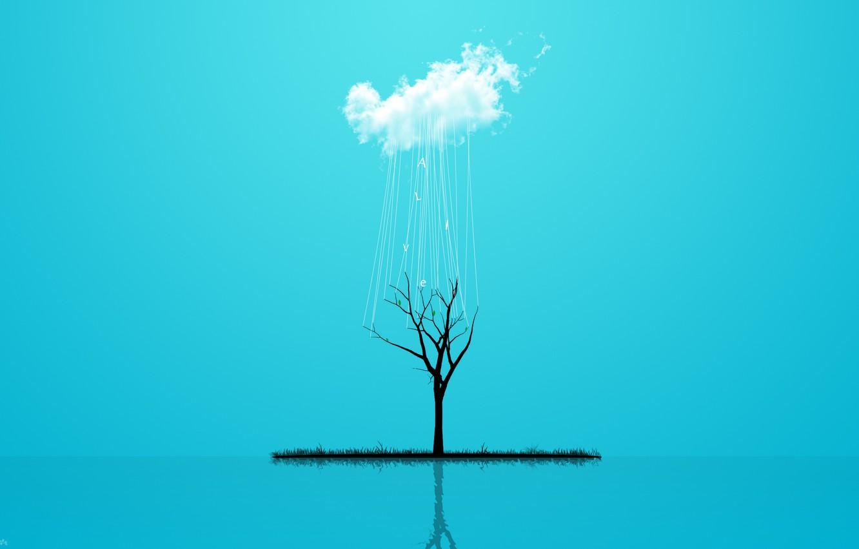 Photo wallpaper grass, style, reflection, rain, tree, minimalism, cloud, grass, rain, minimalism, style, cloud, tree, 2560x1600, reflection