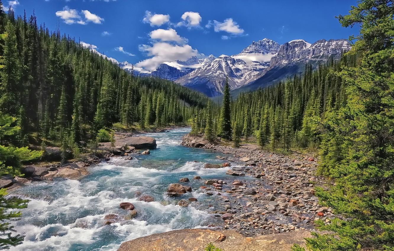 Photo wallpaper forest, mountains, river, Canada, Albert, Banff National Park, Alberta, Canada, Mistaya River, Banff national Park