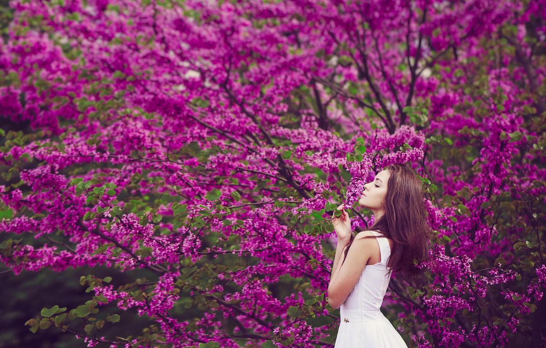 Photo wallpaper girl, spring, flowering