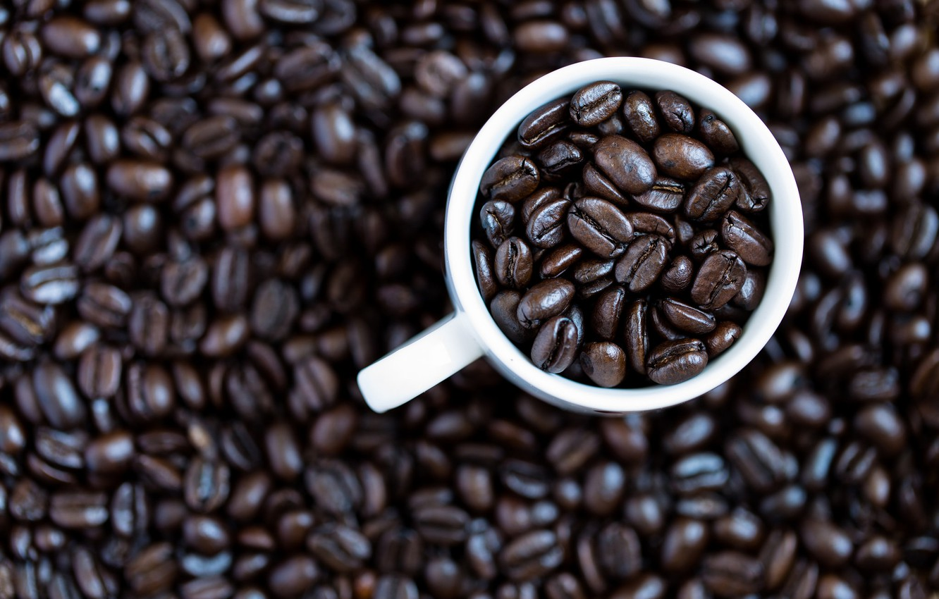 Photo wallpaper coffee, mug, coffee beans