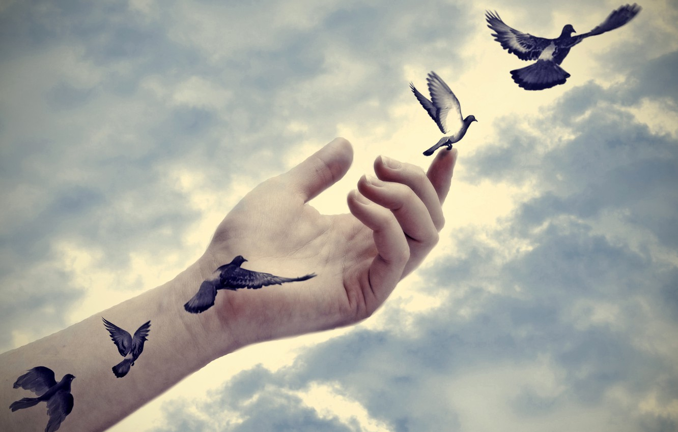 Photo wallpaper peace, freedom, tattoo, effect, hand, real, doves, arm, illusion