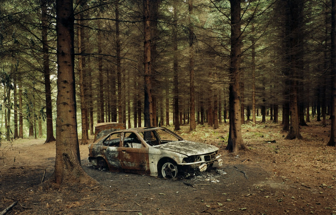 Photo wallpaper forest, fire, BMW, the skeleton, car