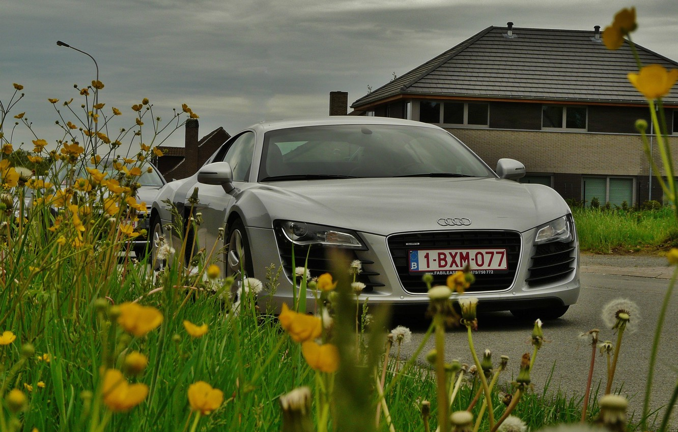 Photo wallpaper road, the sky, grass, clouds, flowers, house, supercar, Audi R8, car, dandelions, four-wheel drive, mid-engined