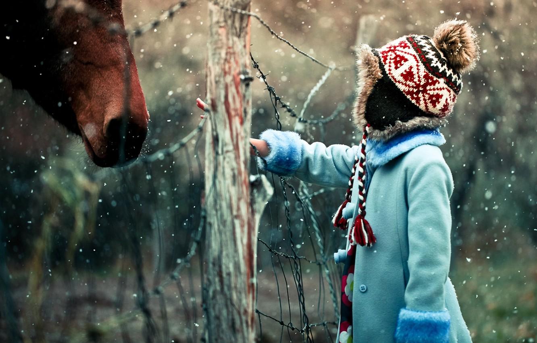 Photo wallpaper winter, snow, mood, mesh, horse, the fence, girl