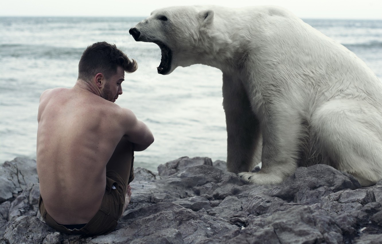 Photo wallpaper the situation, bear, guy