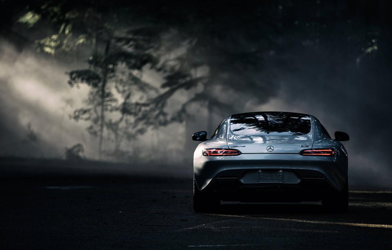 Photo wallpaper Mercedes-Benz, Dark, AMG, Sun, Color, Silver, Forest, Rear, 2016, GT S
