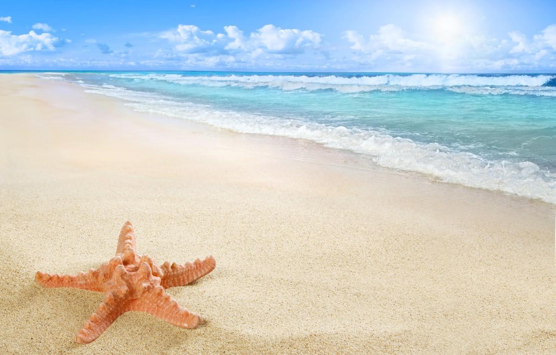 Photo wallpaper beach, sea, sun, sand, starfish