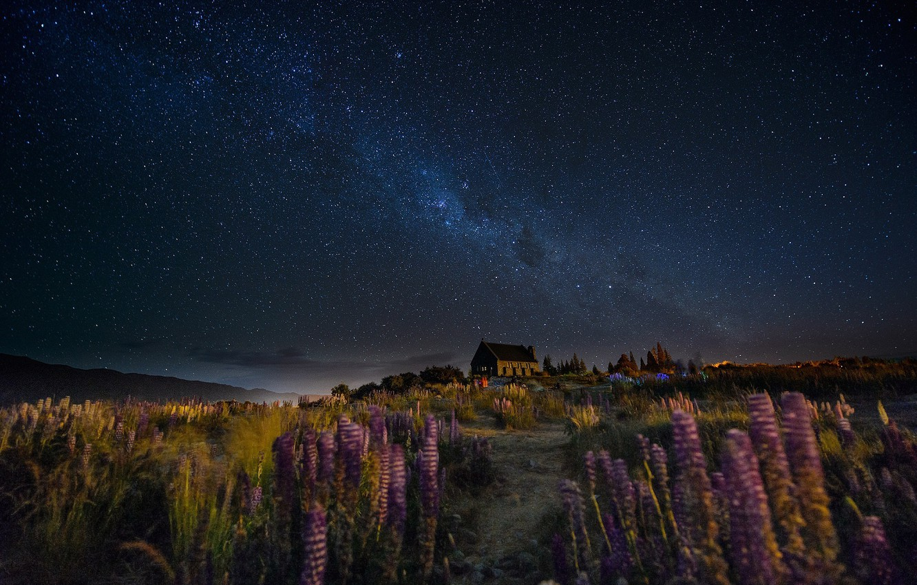 Photo wallpaper the sky, flowers, night, house, the wind, trail, stars, New Zealand, hill, the milky way, …