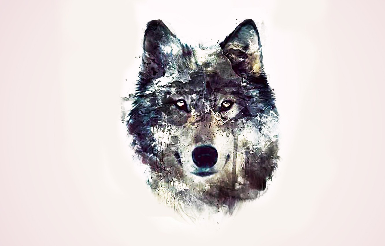 Photo wallpaper eyes, background, abstraction, wolf