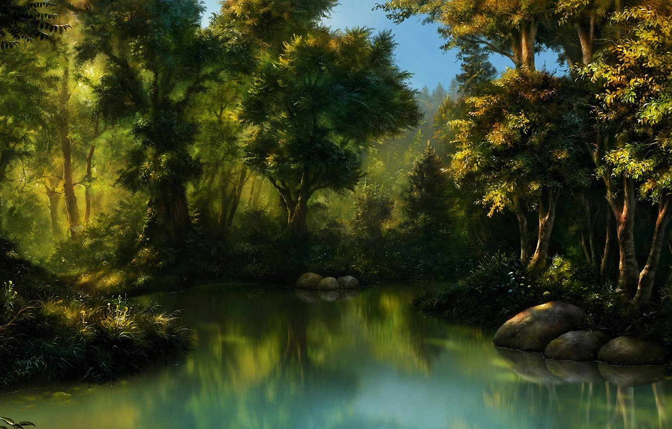 Photo wallpaper forest, water, stones, swamp, thicket, art