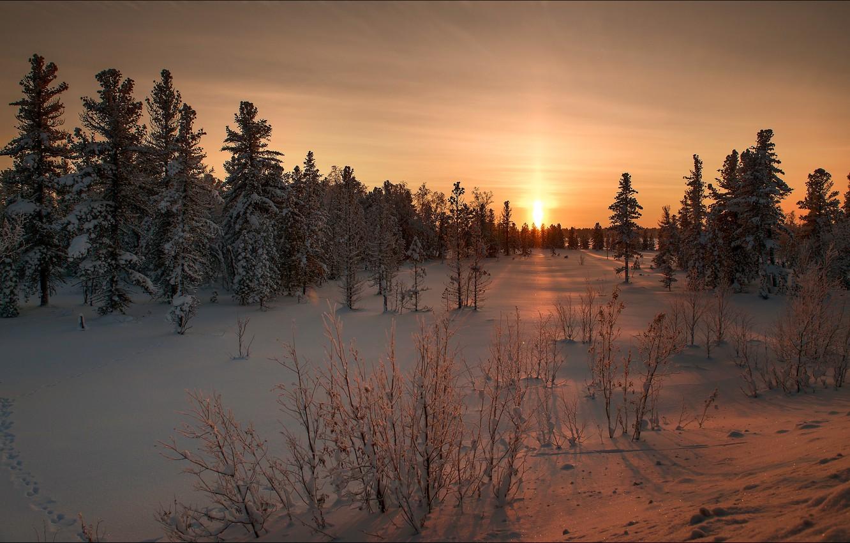 Photo wallpaper winter, snow, landscape, nature, dawn, beauty, ate
