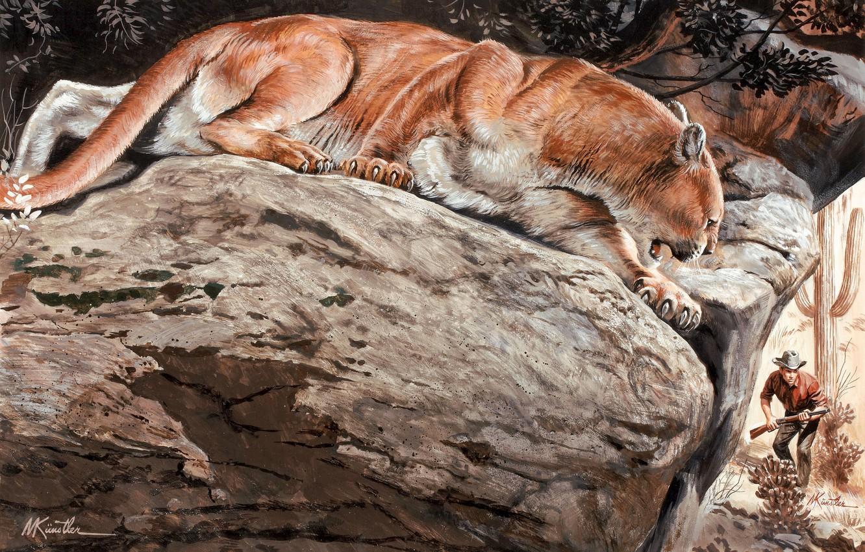 Photo wallpaper nature, stones, predator, Puma, wild cat, hunter, mountain lion, Cougar, Mort Künstler