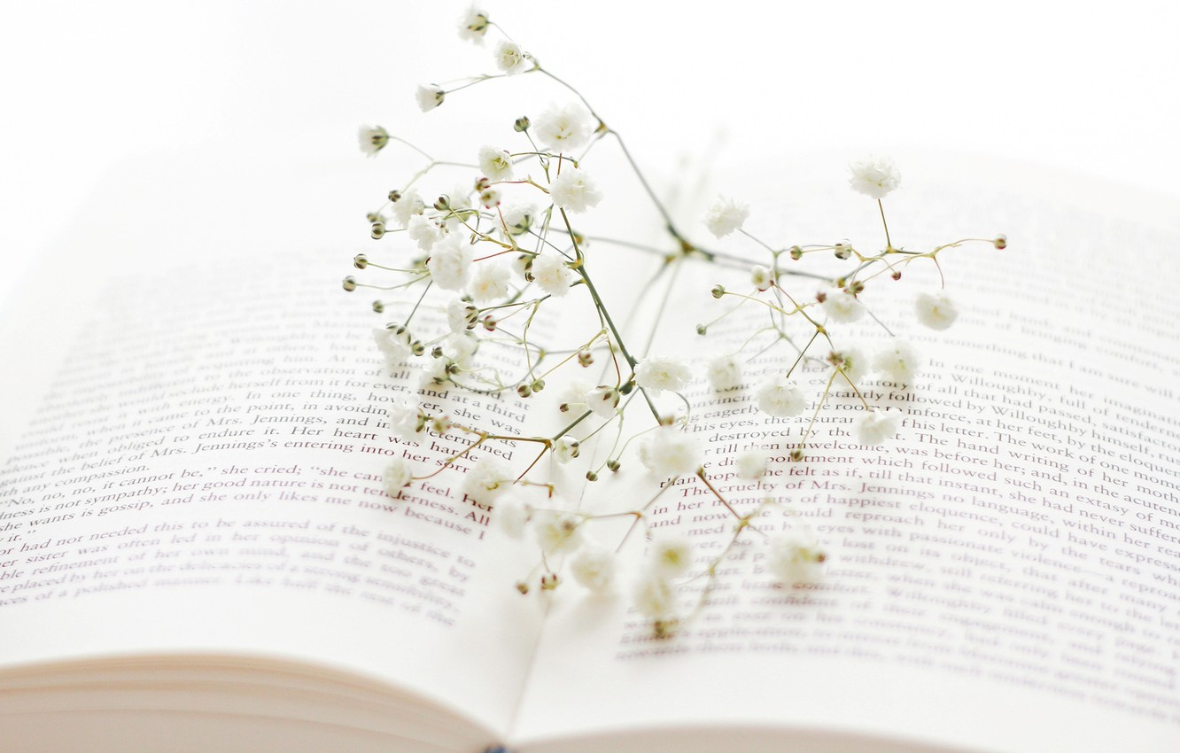 Photo wallpaper flowers, sprig, branch, book, white