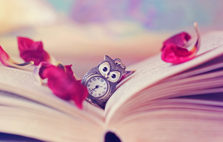 Photo wallpaper owl, watch, petals, book, page