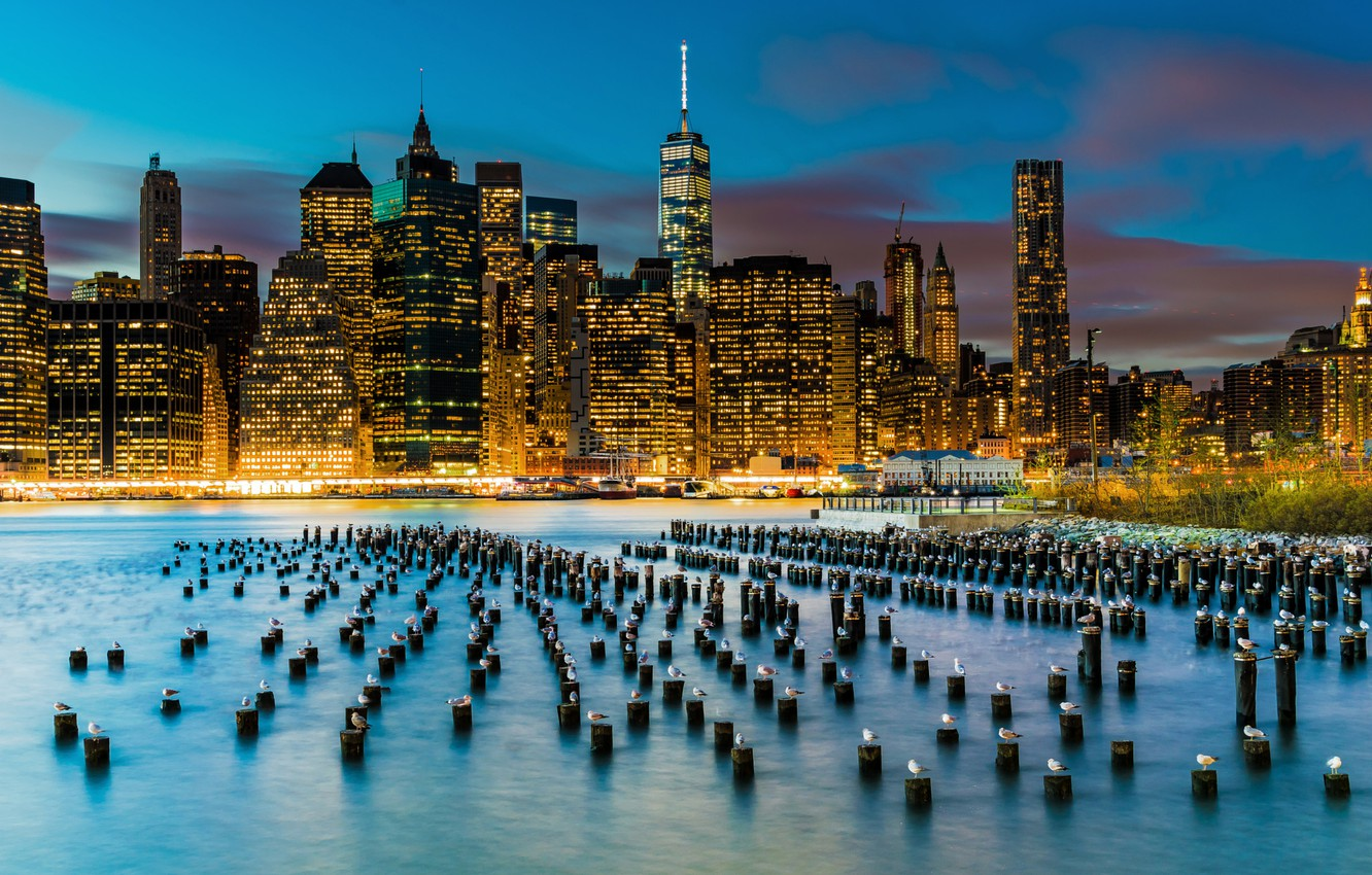 Photo wallpaper birds, the city, lights, river, building, seagulls, New York, skyscrapers, support, USA, Lower Manhattan, East …