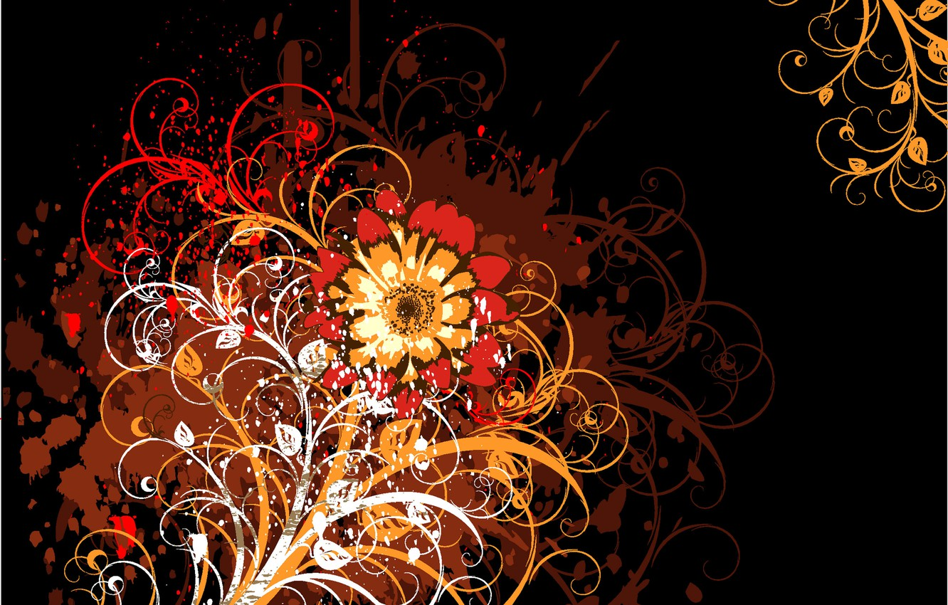 Photo wallpaper flower, abstraction, patterns, black background