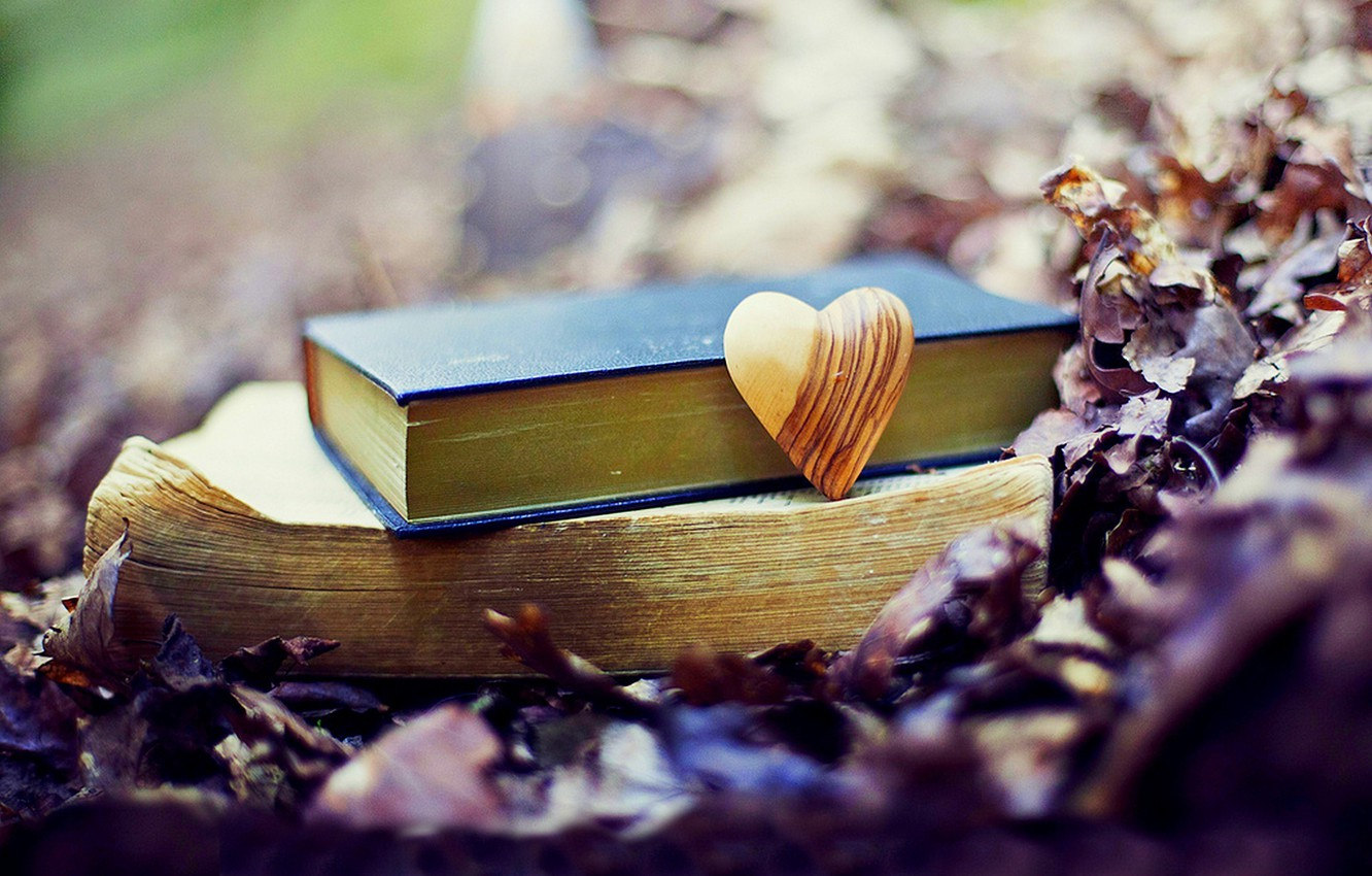 Photo wallpaper autumn, forest, leaves, love, nature, Park, heart, books, love, forest, nature, heart, park, autumn, old, …