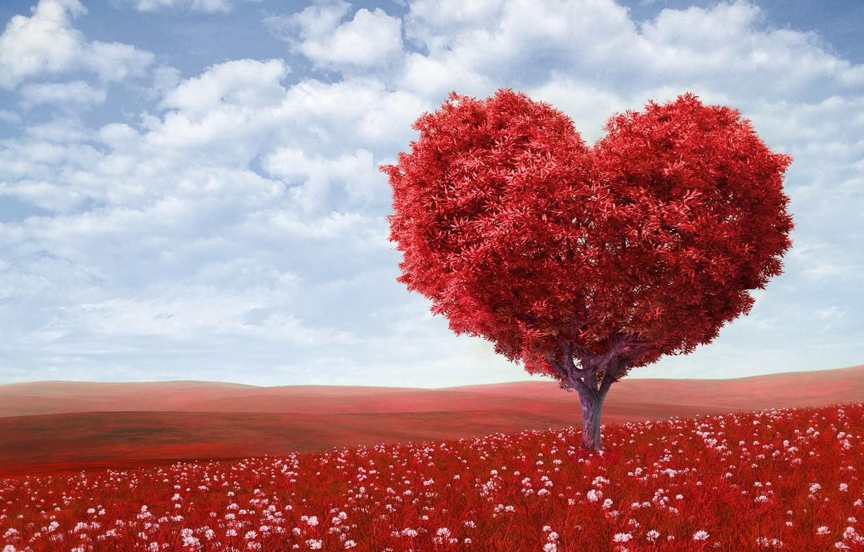 Photo wallpaper field, the sky, clouds, love, flowers, tree, romance, heart, love, Valentine's day, sky, field, heart, …