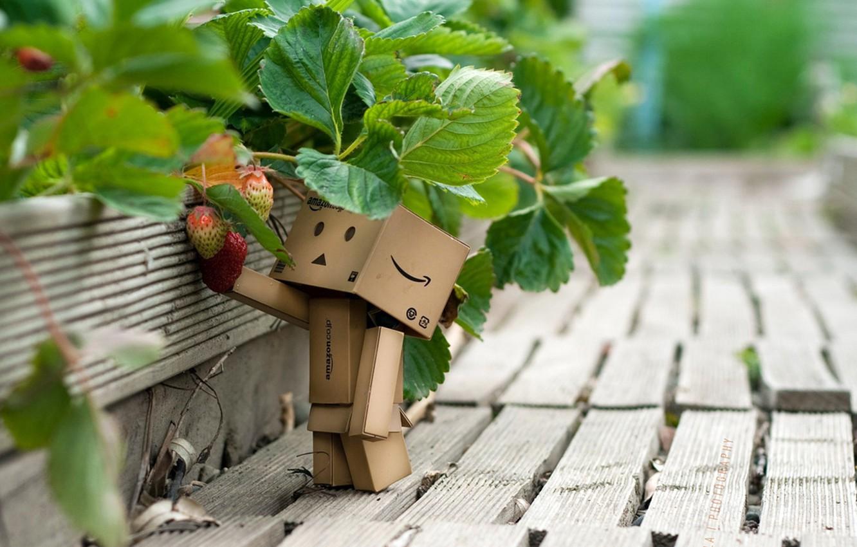 Photo wallpaper macro, interest, strawberries, man, boxed