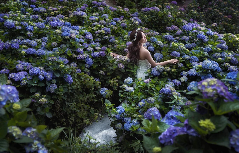 Photo wallpaper girl, flowers, mood, Asian, the bride, wedding dress, hydrangeas