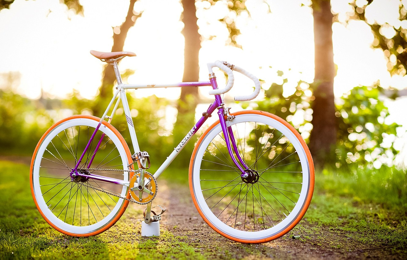 Photo wallpaper greens, grass, leaves, trees, bike, background, Wallpaper, vegetation, mood, blur, wallpaper, bicycle, widescreen, background, leaves, …