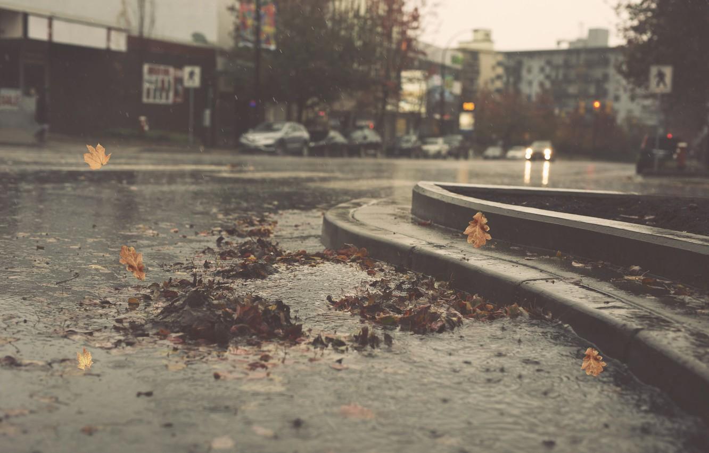 Photo wallpaper city, cars, autumn, leaves, street, pond, raining