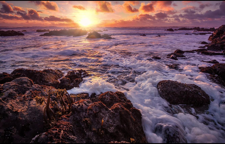 Photo wallpaper sea, wave, foam, the sun, clouds, sunset, stones, shore