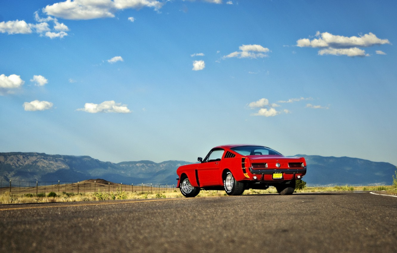 Photo wallpaper road, machine, Mustang, ford