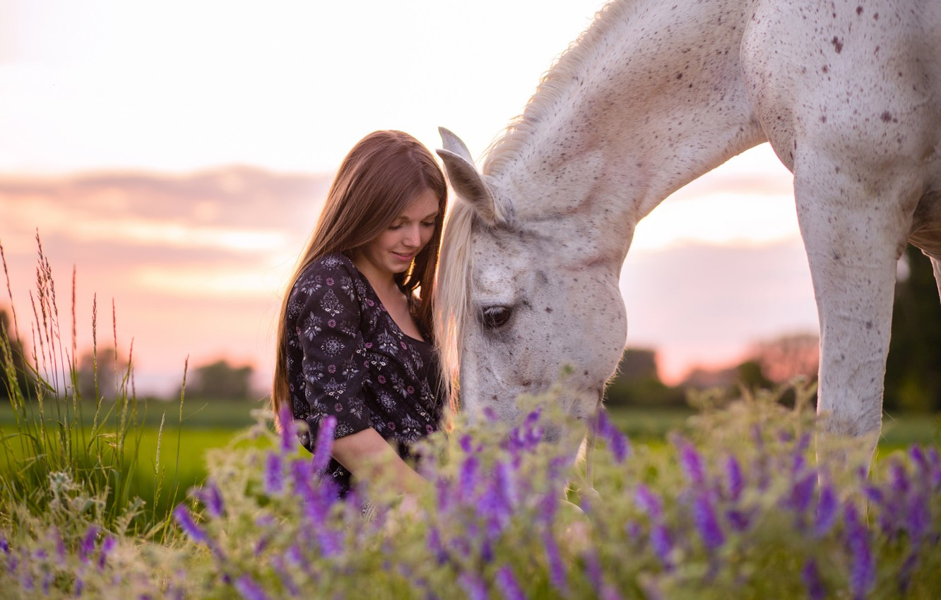 Photo wallpaper girl, nature, horse