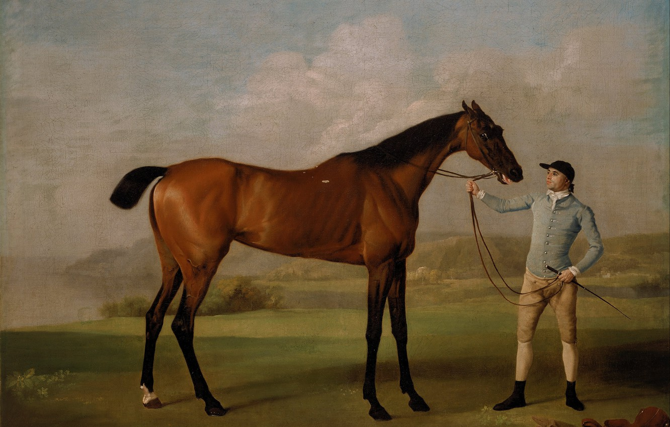 Photo wallpaper horse, picture, art, Molly Long legs with jockey (1761-62), Stubbs, race horse portrait