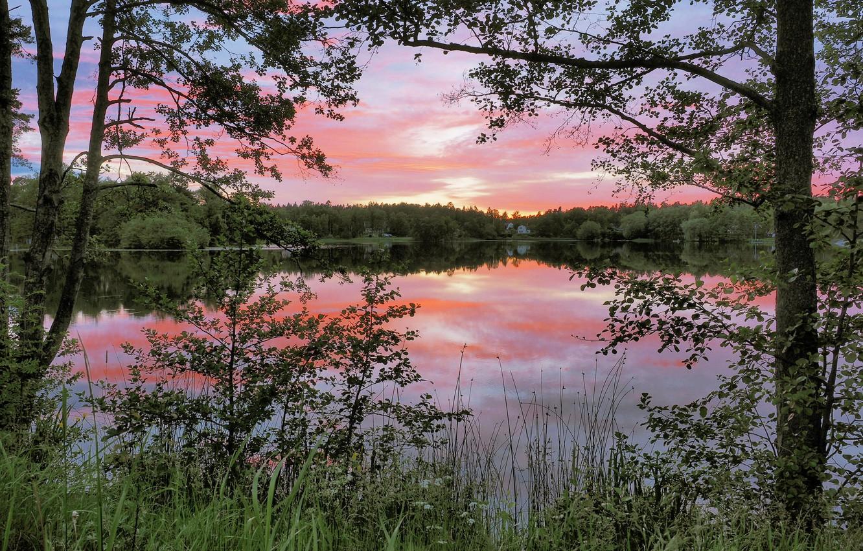 Photo wallpaper trees, lake, reflection, dawn, morning, Sweden, Sweden, Nacka, Naka
