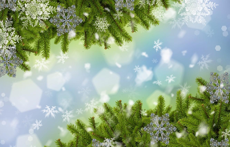 Photo wallpaper snow, snowflakes, branches, tree