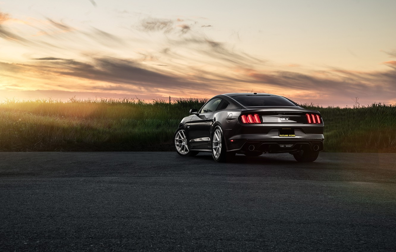 Photo wallpaper Mustang, Ford, Muscle, Car, Sunset, Sunrise, Wheels, Before, Rear, Garde