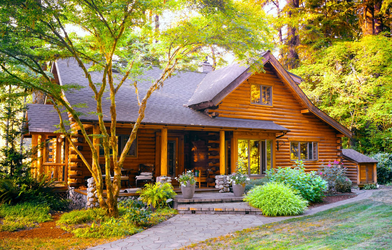 Wallpaper Forest Summer Nature Wooden House House In The Woods