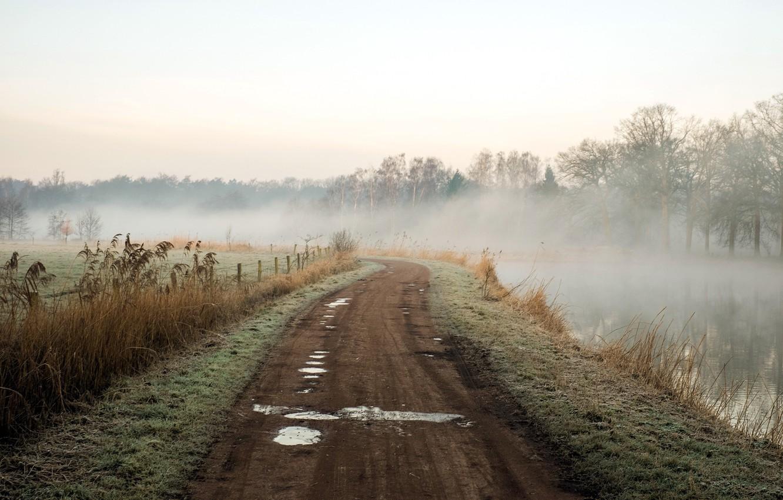 Photo wallpaper road, landscape, nature, fog, river, morning