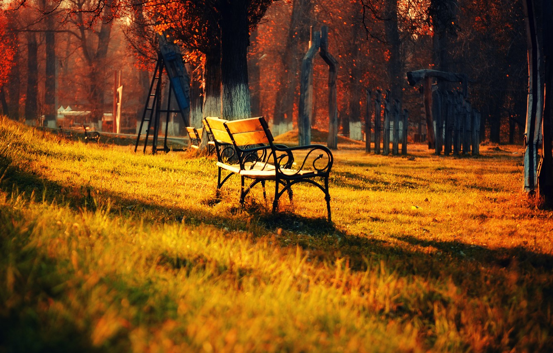 Photo wallpaper autumn, grass, leaves, light, trees, landscape, bench, nature, Park, light, grass, trees, landscape, nature, park, …