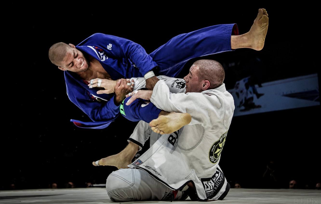 Wallpaper Fight, Ambar, BJJ images for