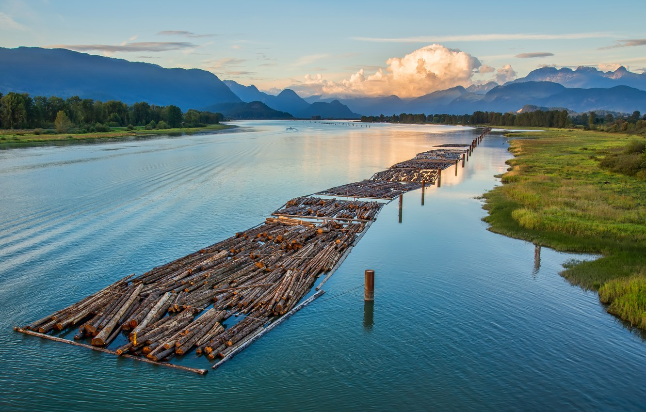Photo wallpaper forest, the sky, clouds, trees, mountains, river, logs, Canada, British Columbia, Canada, alloy