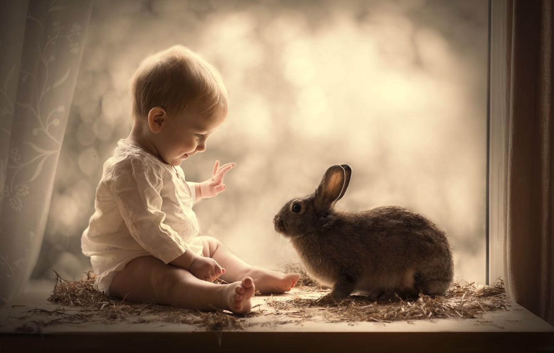 Photo wallpaper boy, rabbit, window