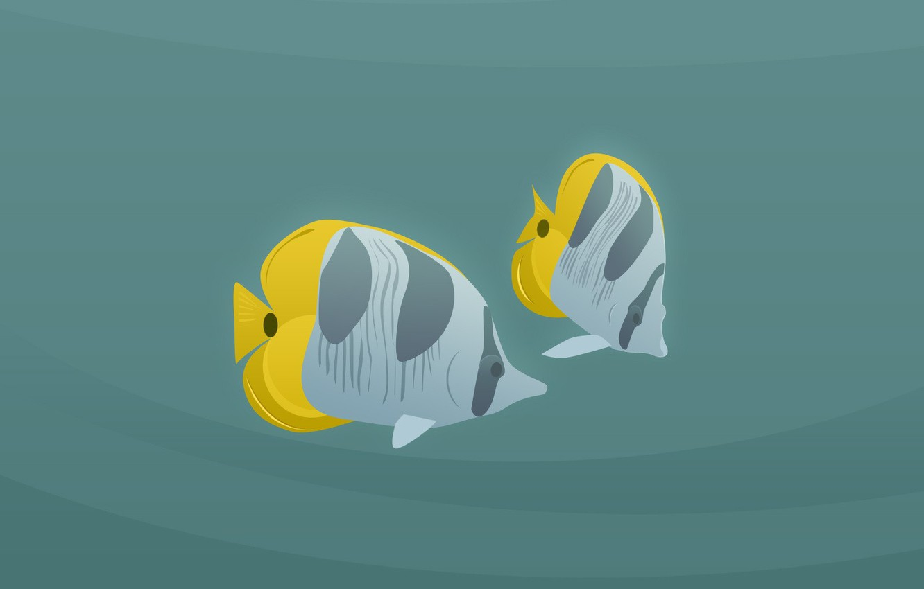 Photo wallpaper minimalism, vector, Fish