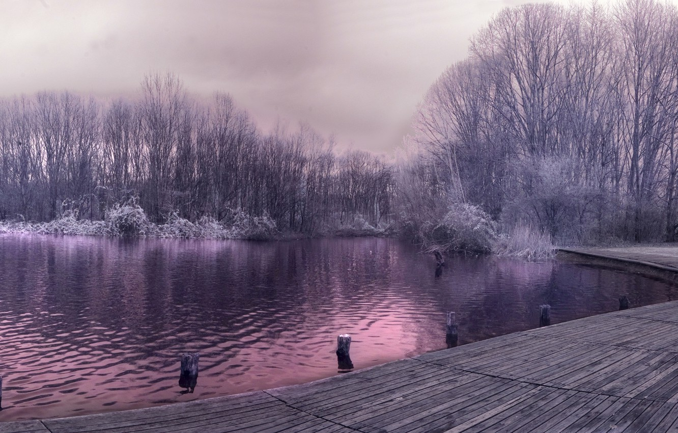 Photo wallpaper frost, grass, trees, lake, pier
