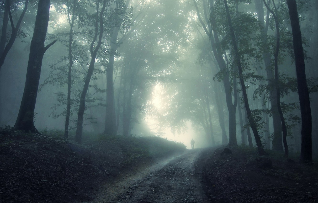 Photo wallpaper fog, fear, the darkness, people, Forest, Ghost, unpredictability