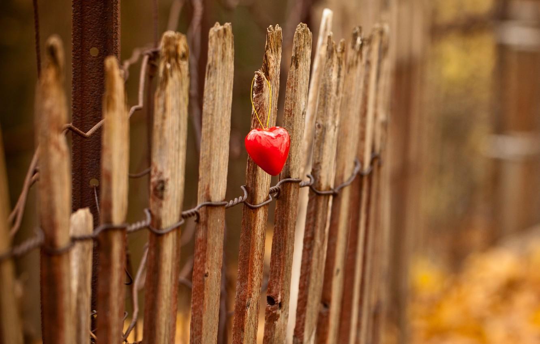 Photo wallpaper light, heart, the fence