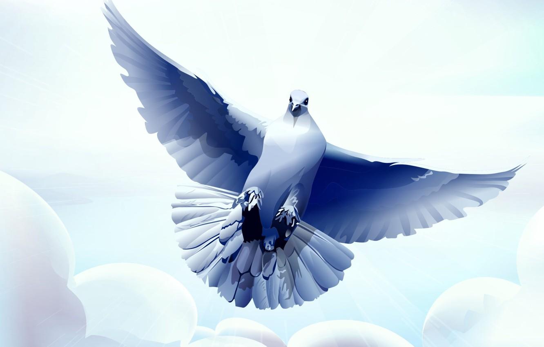 Photo wallpaper clouds, vector, Dove