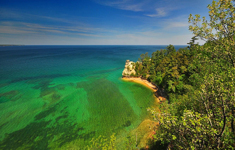 Photo wallpaper sea, trees, nature, rock, shore