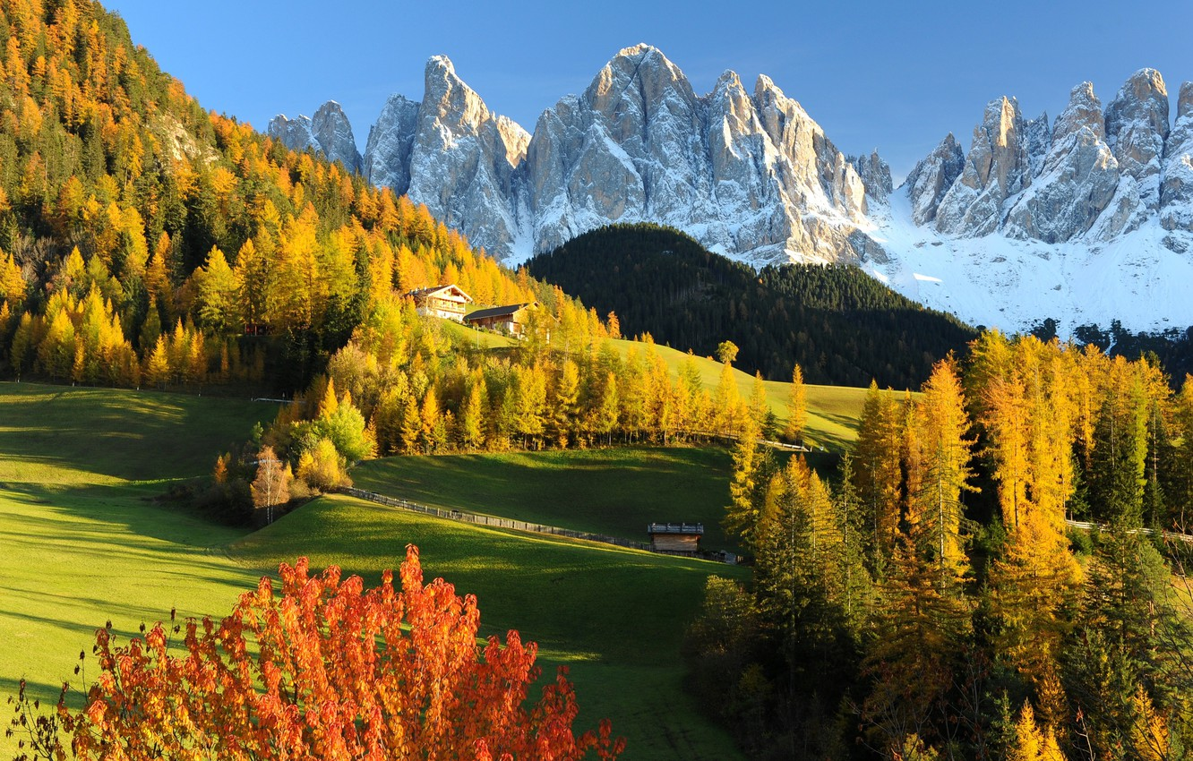 Photo wallpaper Nature, Mountains, Autumn, Forest, Alps, Meadow, Italy, Landscape, Dolomites, Val Gardena